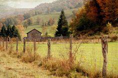 Dry Fork, Tucker County, West Virginia