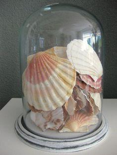 Met een glazen stolp kun je elke keer een ander sfeerhoekje creëren. Verkrijgbaar bij www.essieswonenenlifestyle.nl