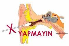 Kulak kiri doğal olarak kulağın içinde bulunur ve onu bu hassas bölgeye zarar verebilecek bakteriler ve diğer maddelerden korur.