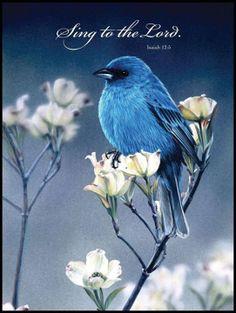 Isaiah 12:5   https://www.facebook.com/photo.php?fbid=10151774098408091