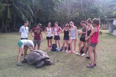 Cheryl teaching new volunteers and new Scholar Sonja about Tortoise Tickle surveys with a very cooperative tortoise! :)#GVISeychelles