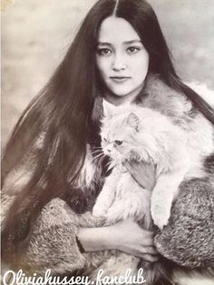 young Olívia Hussey holding a fluffy white cat