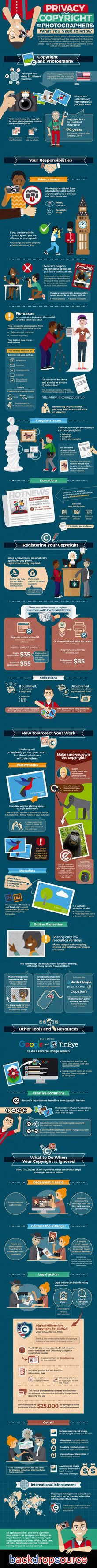 Photography Backdrops - INFOGRAPHICS