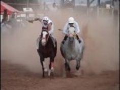 SAMURAI    HORSE   RACING    HORSE   RUNNING Sports Picks, Horse Racing, Samurai, Horses, Running, Animals, Animales, Animaux, Keep Running