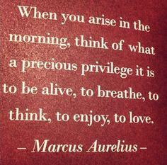 Marcus Aurelius Quotes: When you arise in the morning... Marcus #Aurelius Quote