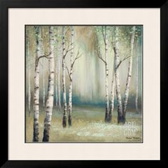 Late September Birch I Premium Giclee Print by Michael Marcon at Art.com