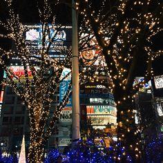 Tokyo nightlife.