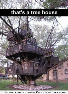 The best tree house ever built
