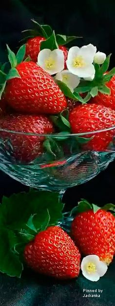Fruits And Veggies, Fruit And Veg, Fresh Fruit, Strawberry Kitchen, Strawberry Recipes, Fruits Photos, Berry Picking, Strawberry Fields Forever, Fruit Picture