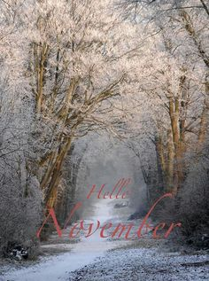 Hello November ❄ No pin limits on my boards 💙 Hallo November, Welcome November, November Month, New Month, November Pictures, November Images, Hello December Tumblr, Hello September, November Wallpaper