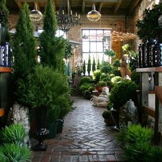 Florist Style in Garden Design Garden Center Displays, Garden Centre, Flower Shop Interiors, Flower Market, Flower Shops, Design Apartment, Lovely Shop, Garden Shop, Rustic Lighting