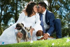 Mascotas en la boda  Forever Photo & Video  #wedding #weddingpets #boda #petfriendly