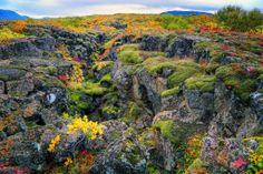 Þingvellir (Thingvellir) National Park, Iceland. #travel #europe #iceland