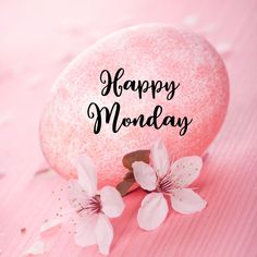 Happy Monday Quotes, Monday Motivation Quotes, Monday Humor, Morning Prayer Quotes, Morning Prayers, Good Morning Quotes, Monday Greetings, Good Morning Greetings, Good Morning Images Flowers