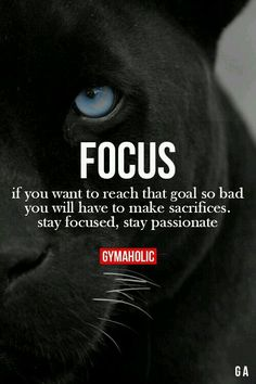 Si quieres alcanzar esa dura meta, tendrás que sacrificarte, mantenerte enfocado y  apasionarte con lo que haces.