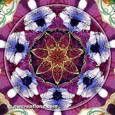 Flower of Life Mandala 8 -Mandala Monday - Flower of Life Mandalas Part 2 - http://go.shr.lc/1qiLUYt -  © Atmara Rebecca Cloe and New World Creations -  Purchase prints and gifts at http://www.zazzle.com/New_World_Creations?rf=238526469533245868