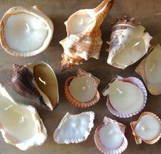 Seashell Candles, Diy Candles, Handmade Candles, Teacup Candles, Small Candles, Unique Candles, Seashell Crafts, Beeswax Candles, Diy And Crafts