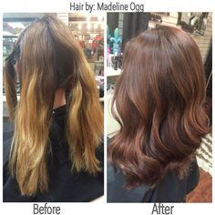 Deep chocolate brown overall with a copper brown hue