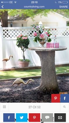 54 DIY Backyard Design Ideas - DIY Backyard Decor Tips Roll up your sleeves and get to crafting! Tree Stump Table, Tree Stumps, Landscape Design, Garden Design, Fence Design, Backyard Makeover, Diy Garden, Garden Table, Outdoor Projects
