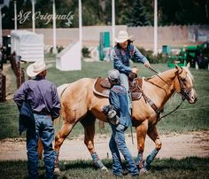 Barrel Racing Saddles, Barrel Racing Horses, Barrel Horse, Cute Horse Pictures, Baby Animals Pictures, American Paint Horse, American Quarter Horse, Western Photography, Equine Photography
