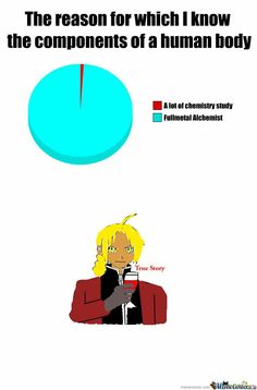 It's scary how accurate this is Lan Fan, Names Of Artists, Fullmetal Alchemist Brotherhood, The Brethren, True Stories, Chemistry, Memes, Scary, Funny Stuff