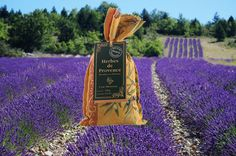 Herbes de Provence - This aromatic sachet of herbs will bring the light, summery flavors of Provence to your kitchen. Each linen bag is crafted in the small, picturesque town of Éguilles, near Aix-en-Provence from traditional Provençal fabric, tied at the top with raffia. This classic blend contains rosemary, savory, oregano, thyme, and basil, and is delicious on roast chicken, grilled meats, and as a finishing touch on pastas or pizza.