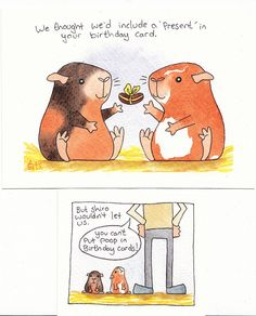guinea pig poop birthday card by shiro_ko, via Flickr