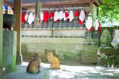 世界最大級の涅槃仏に逢いたくて2012夏☆ - ○○しゃしんのじかん    http://blog.goo.ne.jp/moriken_photo/