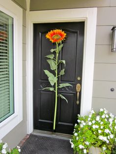 Yes or no to the giant sunflower on the door?