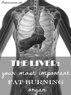 Do you have: -Sensitivity to chemicals -Pain between the shoulder blades -Stomach upset by greasy foods -History of nausea, motion sickness, or morning sickness -Headache over the eyes -Chronic fatigue or fibromyalgia -Or are you easily intoxicated if drinking wine and easily hung over?  Find out what part of your body is trying to talk to you!