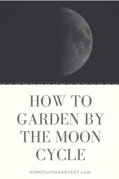 How to Garden by the Moon Cycle   Home for the Harvest