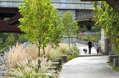 """plaza landscape design""的图片搜索结果"
