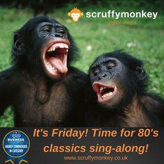 We love a good #friday sing-along  @scruffymonkeydm HQ #fridayfeeling #bolton #singing #80s #web #webdesign #happy