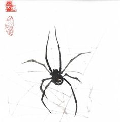 black widow spider - but add the black widow symbol to the spider's back Black Widow Symbol, Black Widow Tattoo, Spider Dance, Spider Art, Spider Queen, Black Widow Spider, Itsy Bitsy Spider, Dangerous Animals, Cover Up Tattoos