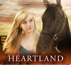 Heartland is about a girl Named Amy who's mom died in a car accident so she continues her moms work ( to help trubled horses) with the help of her sister Lu, her grandpa jack, her dad ( who left her mom when she was little) and Ty the stable hand ( who starts off on parol but then changes his ways. Ty and Amy adventually fall for each other and finally in season 4 start to date) spoiler alert lol