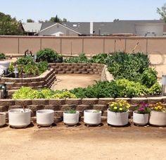 Raised Planter Garden Boxes