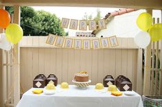 digger birthday party