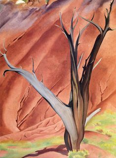 Gerald`s Tree by Georgia O'Keeffe