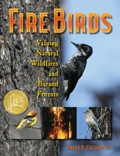 Focusing on the work of University of Montana professor Richard Hutto, this book tells the story of how dozens of species of birds use the burn areas of wildfires. At least 15 bird species prefer burned forests to all other habitats.