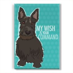 Scottish Terrier Fridge Magnet - My Wish is Your Command - Funny Scottie Gift