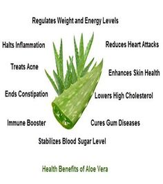 Amazing Health Benefits of Aloe Vera. Learn about Tego Tea; the diabetic miracle that significantly reduces blood sugar levels and symptoms associated with Type 2 Diabetes. If you're looking for alternatives, remedies, or solutions, then Tego Tea could pr #DiabetesCureAloeVera