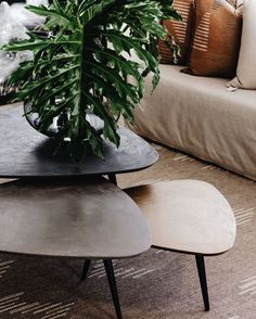 """WUNDERS JOHANNESBURG on Instagram: """"Our teardrop nesting tables are the perfect home for that vase you love, or coffee table books you wish to display. #wundersjhb…"""""""
