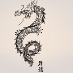 """Vinyl Wall Decal Sticker Chinese Asian Dragon 21""""x46"""""""