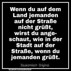 #witzigesprüche #witzigebilder #witzigesbild #witzigerspruch #lustige #lustigesprüche #lustigememes #lustigerspruch #lustiger #lache #bestewitze #mehrlachen #deutschmemes #spruchseite #spruchbilder #spruchbild #ironie #schwarzerhumoristtoll #flachwitz #witzig #lustigewitze #lustigebilder #lustigesbild Memes, Coding, The Originals, Good Jokes, Funny Jokes, Humorous Sayings, Country, Weird, Laughing
