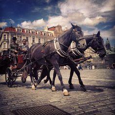 Old Square, Praha