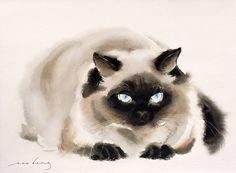 Original Animal Drawing by Soo Beng Lim Watercolor Drawing, Watercolor Animals, Cat Drawing, Animal Paintings, Animal Drawings, Guache, Accesorios Casual, Cat Art, Pet Portraits