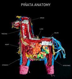 Anatomía de una piñata