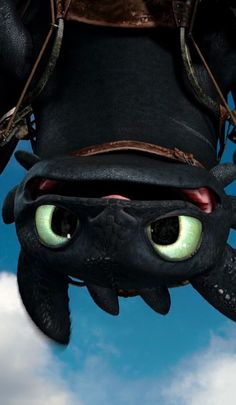 Wallpaper Celular Fofo Banguela Ideas For 2020 Cute Toothless, Toothless And Stitch, Toothless Dragon, Dragon Wallpaper Iphone, Toothless Wallpaper, Screen Wallpaper, Dragons 3, Cute Dragons, Cute Disney Wallpaper