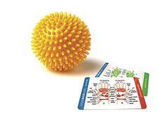 "Porcupine Sensory Massage Ball 3"" inches (Color may vary)... https://www.amazon.com/dp/B000KS9Z8K/ref=cm_sw_r_pi_dp_x_XyupybX3TWGFD"