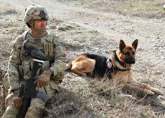 In honor or veteran's  today I want to thank both our 2 and our 4 legged . Thank you for your service to our country.